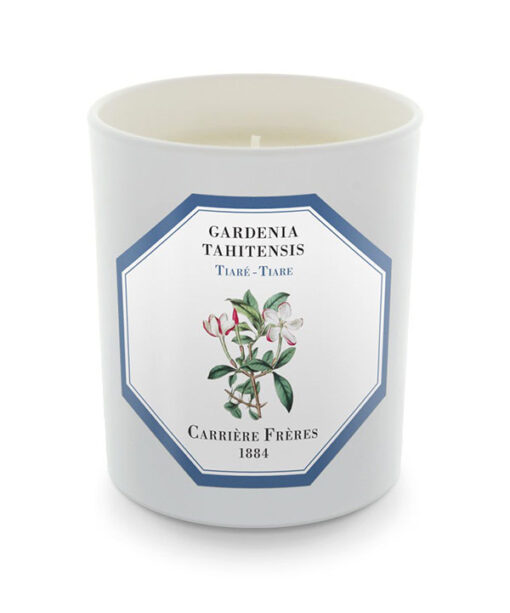 Vela de Gardenia